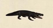 Cerrejonisuchus