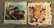 Gary Fleming's Wild Animals ABC (9)