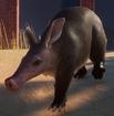 Aardvark (Planet Zoo)