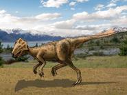 Dm archaeoceratops