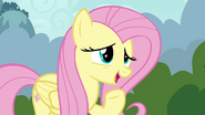 Fluttershy suggests a special Breezie cheer S4E16