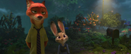 Judy says clever fox