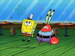 Krabs look at squidward