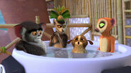 Lemurs in a hot tube