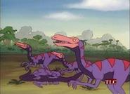MSB Raptors