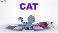 MagicBox Cat