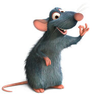 Remy the Rat
