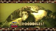 Rolling Hills Zoo Crocodiles