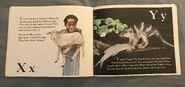 The Furry Animal Alphabet Book (14)