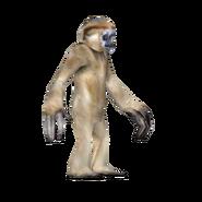 ZT Crested Gibbon