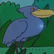 Batw 043 shoebill