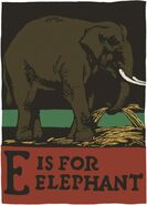 CB Falls Elephant