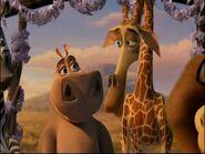 Melman and Gloria