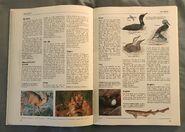 The Kingfisher Illustrated Encyclopedia of Animals (46)