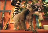 Zoboomafoo Ring-Tailed Lemur