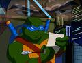 2509300-turtle156