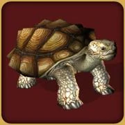 African Spurred Tortoise (Zoo Tycoon 2)