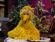 Big Bird gets sick with tweet itis in Sesame Street Visits the Hospital