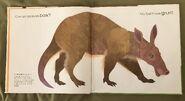 Can an Aardvark Bark? (1)