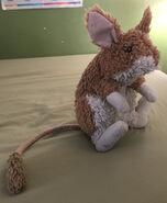 Kuki the Kangaroo Rat