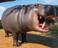 Planet Zoo Pygmy Hippopotamus