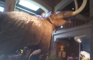 Toledo Zoo Mastodon