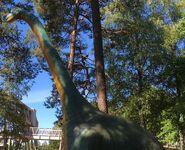 Brachiosaurus-boraszoo