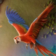 Encanto Scarlet Macaw