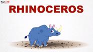 MagicBox Rhinoceros