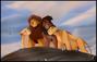 Simba, Nala, Kovu, and Kiara (V2)