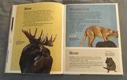 The Dictionary of Ordinary Extraordinary Animals (32)