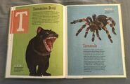 The Dictionary of Ordinary Extraordinary Animals (49)
