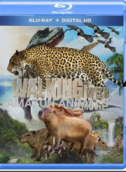 WWAMZNA Poster.png