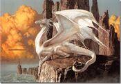 White European Dragon