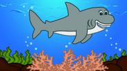 123ABCTV Shark