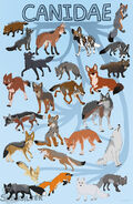 Canidae 2.0 by Snowsilver