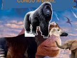 CONGO ANIMAL