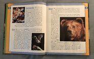 Scholastic Encyclopedia Of Animals (3)
