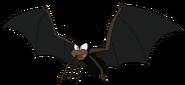 Spider Bat rileysadventures