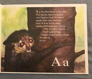 The Furry Animal Alphabet Book (1)