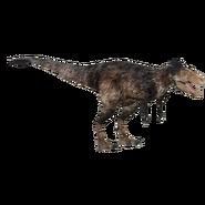 Tyrannosaurus (Ultamateterex2) v2 Y