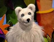 Zack the Arctic Fox