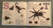 Bugs A-Z (10)