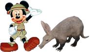 Mickey meets Aardvark