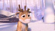 Niko Reindeer 1
