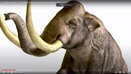 Zoo Clues Mammoths