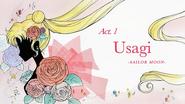 Act 1. Usagi, Sailor Moon (Title Card)