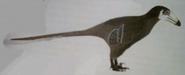 Black-Lipped Troodont