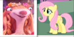 Brooke and Fluttershy