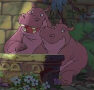 Hippopotamus01-jungle-book-2
